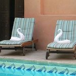 Nice chairs by the pool