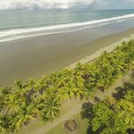 THE PARADISE BEACH.- PLAYA LINDA JUST A FEW MINUTES FROM LA PALAPA ECOLODGE.