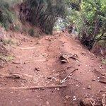 hike down
