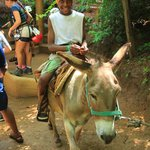 donkey ride up the mountain (parents must assist)