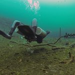 Seeing the world from another angle...defy gravity, become an elite scuba diver, join us.