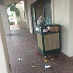 Trash outside the entrance. Trash was also overflowing in the interior receptacle as well.