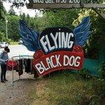 Black Dog Cafe