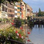 運河沿いの美しい花々