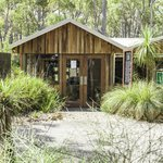 Goanna Gallery and Bush Cafe