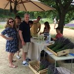 Lavender, private tours in Provence
