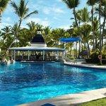 Zwembad met swimupbar