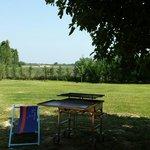 Parco con possibilità di fare barbecue con varie tavoli