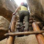 Exit Ladder