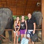 Baby elephant show