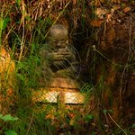 Little hidden buddha