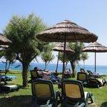 Limanaki beach taverna - beautiful