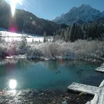 Zelenci - the spring of Upper Sava river