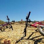 Free bikes to enjoy the coastline