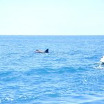 ballade en mer avec la base nautique de l'hôtel