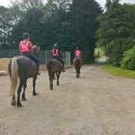 Bewerley Riding Centre