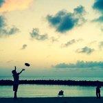 sunset frisbee