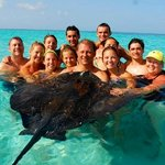 sting ray city tour