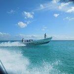 Saona Island Speed boat