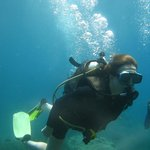 Elina 20 first time ever scuba diving - at 8 meters