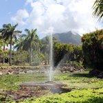 Nevis Botanical Gardens - lake
