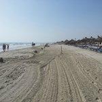 plage nettoyée ts les matins