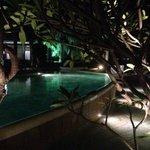 La piscine au crépuscule...