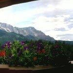 Panorama uitzicht vanaf kamer 303