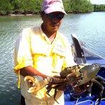 crab 3.8kg