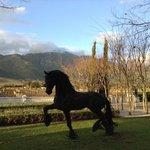 Grande Provence Wine Farm