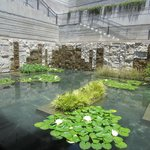 Getty pond