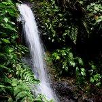 Small cascada.