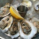 Wellfleet Oysters with Pernod Cucumber Mignonette