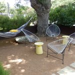 Front yard with hammock & sitting area