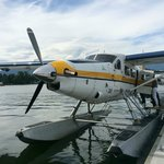 Our DHC-3T Otter C-GOPP