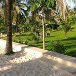 Gardens and beach sand