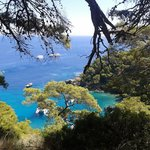 A' Smerza Bar Ristoro - Isole Tremiti