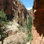 Hiking Zion!