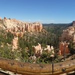 Bryce Canyon - we drove through Zion and spent a day at Bryce- highly suggested!