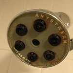 Mildew on showerhead - yuck!