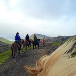 Laxnes Horse Ride