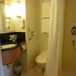Premier Cabin Washroom