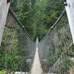 Logan Creek Suspension bridge