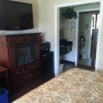 Tv, fireplace, fridge and freezer