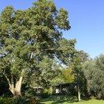 5 acres of award winning garden