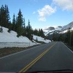 Views on Trail Ridge Road