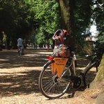 Met de fietsen van Lucca Fora de muren van Lucca ontdekken