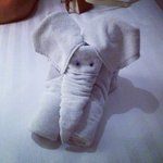 The housekeepers got creative with the towels! Made our day.