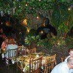 Rainforest Cafe 1