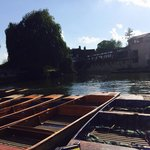 Nice day to go punting